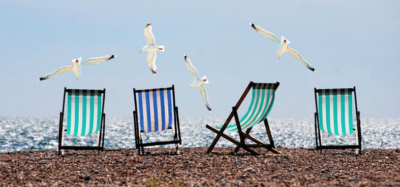 seagulls-deckchairs
